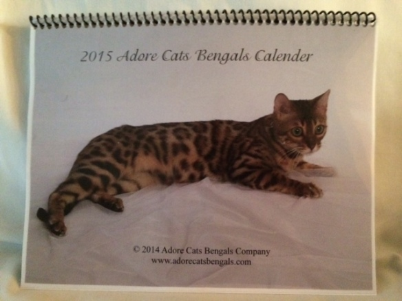 Bengal Cat Calendar for 2015