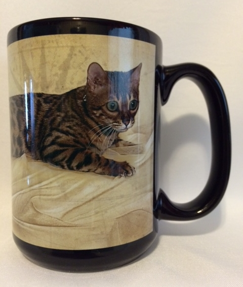 Brown Spotted Rosetted Bengal Cat. $19.99